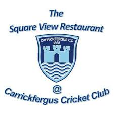 Square View logo